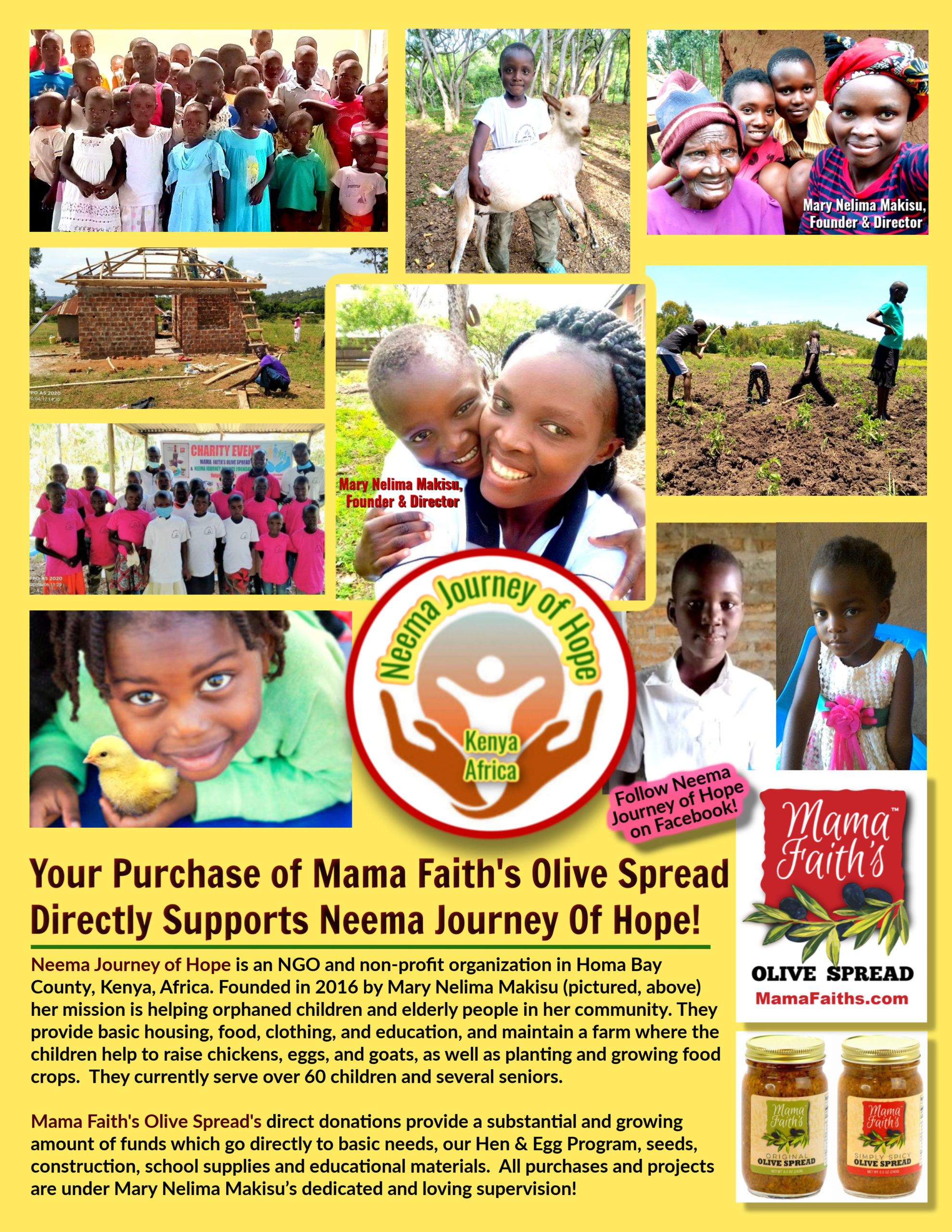 neema journey o f hope flyer